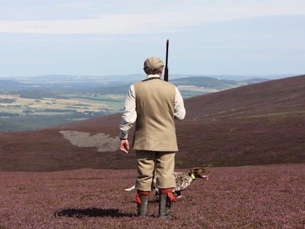 Grousejagt i Skotland